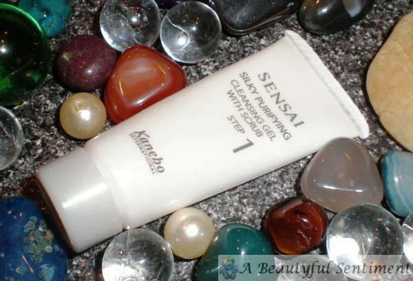 596f5197110 Kanebo Sensai Silky Purifying Cleansing Gel with Scrub Review ...